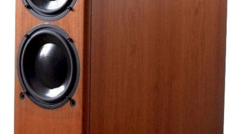 Image of Used  PMC TLE1 Subwoofer  for sale